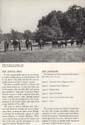 School of Horsemanship Catalog 40